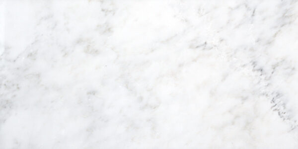 calacatta orient polished 12x24 field tile